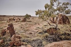 Omgeving Australië © Nuon Solar Team