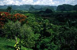 Pinar del Río - Paysage de montagne à Cuba © Patrick Nouhailler