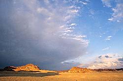 Sinai,  Wadi Ghazala
