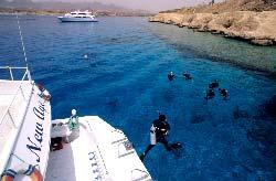 Sharm El Sheik - Plongeurs à Ras Katy