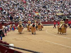 Plaza de Toros Las Ventas - Début de corrida - Madrid