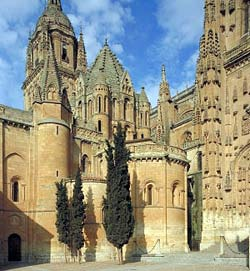 Vieille cathédrale. Patio Chico(petit patio), Salamanca