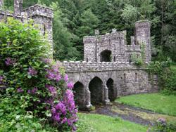 Ballysaggatsmore Tower © IrishFireside