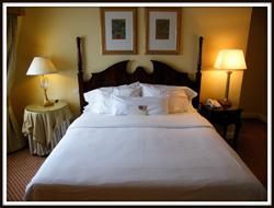 The elegant Westin Hotel Dublin © UggBoy♥UggGirl
