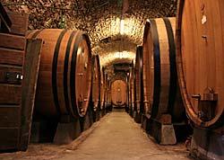 Caves de Chianti - Castellina in Chianti © roblisameehan