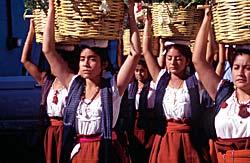 Bajio - Mexique © Mondeos
