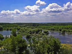 Les marais en bas du Danube, prise d'un train © Gabriel
