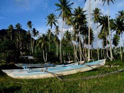 Polinesia (www.viajar24h.com)-34 © Viajar24h.com