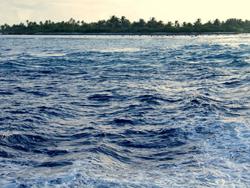 Tahiti (www.viajar24h.com)-543 © www.viajar24h.com