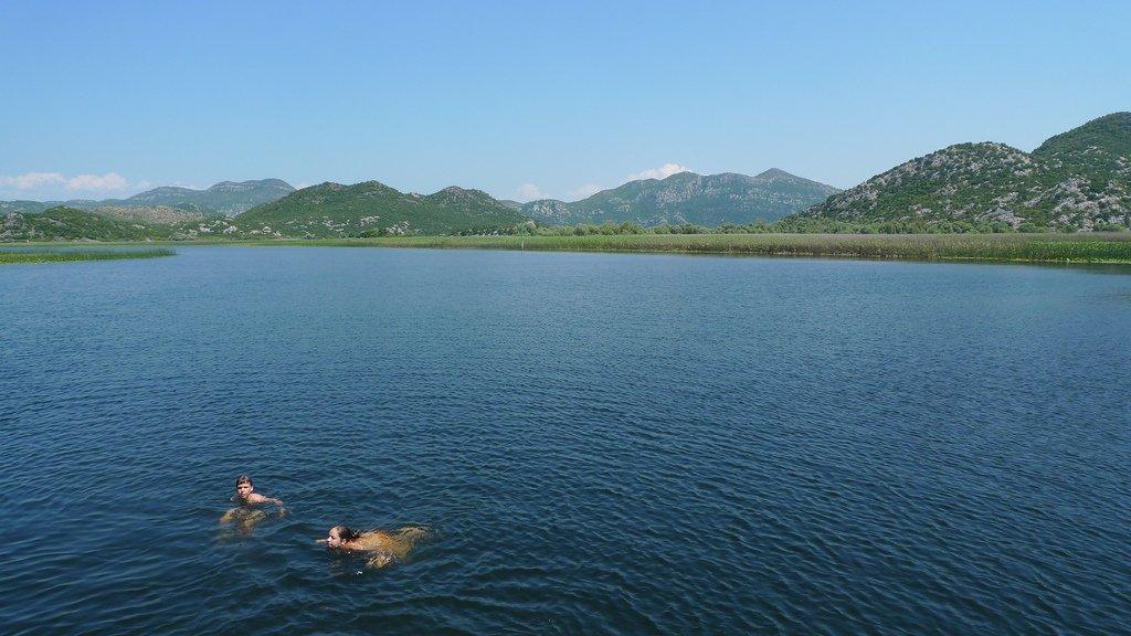 Le centre : lac de Skadar, Podgorica