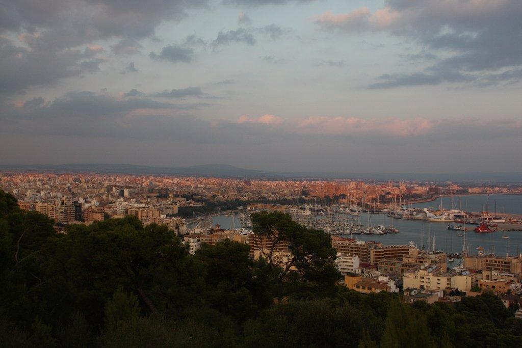 Majorque : Palma