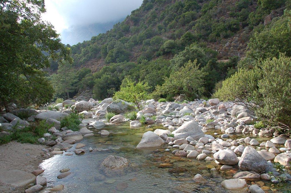 Corse - Gorges de Spelunca