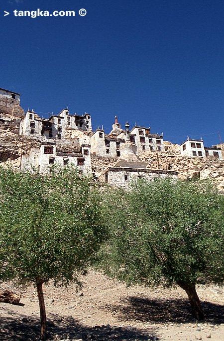 Ladakh - Village ladakhi
