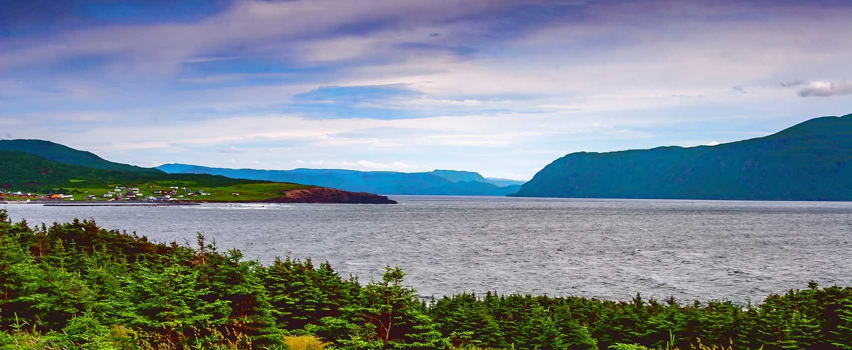 Les délices de Terre-Neuve-et-Labrador