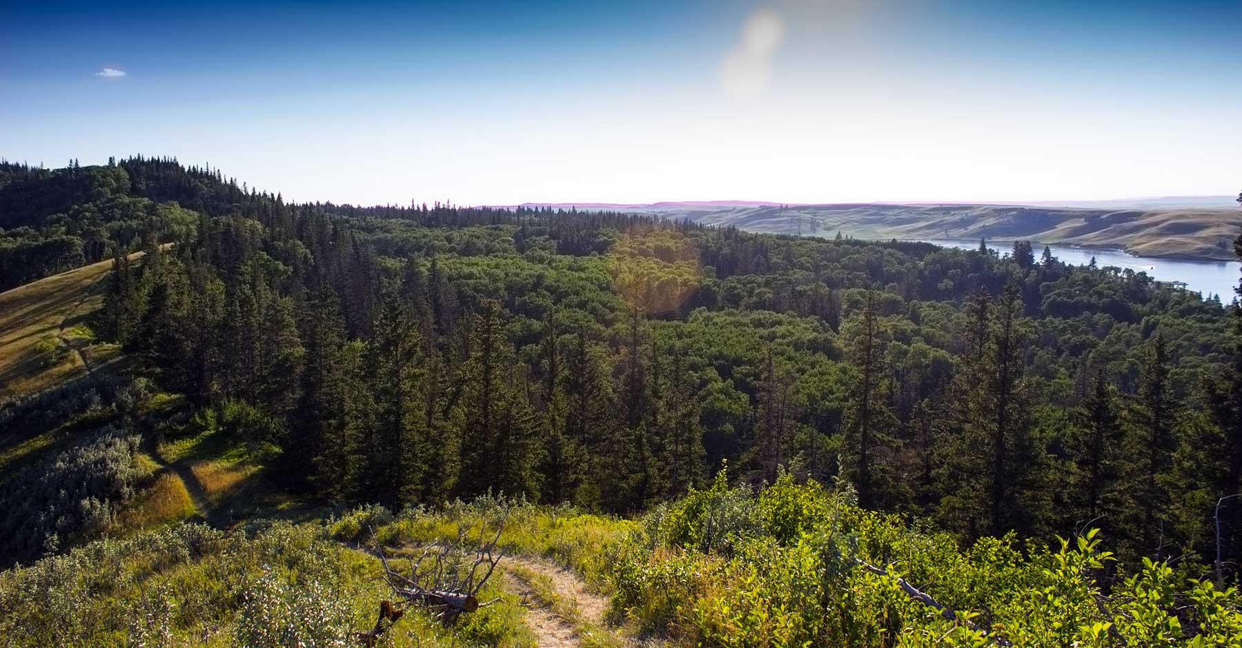 Le sud de la Saskatchewan