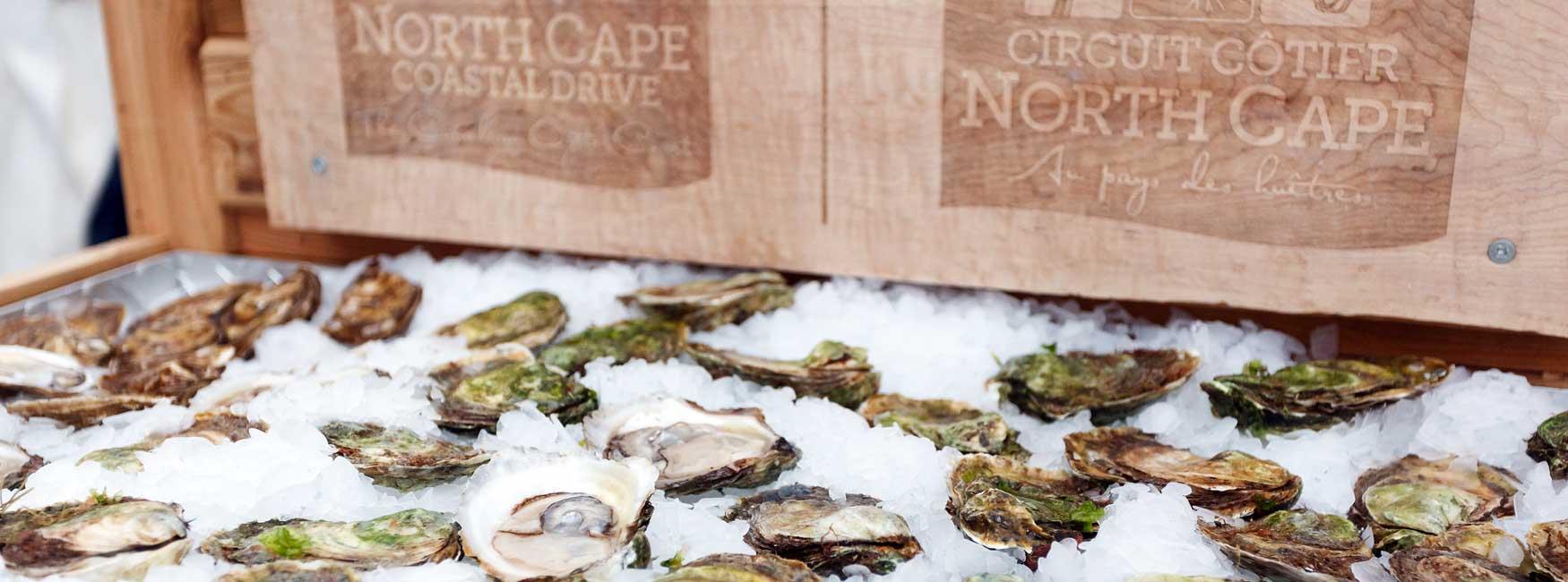 Huit choses à savoir sur les huîtres de l'Île-du-Prince-Édouard