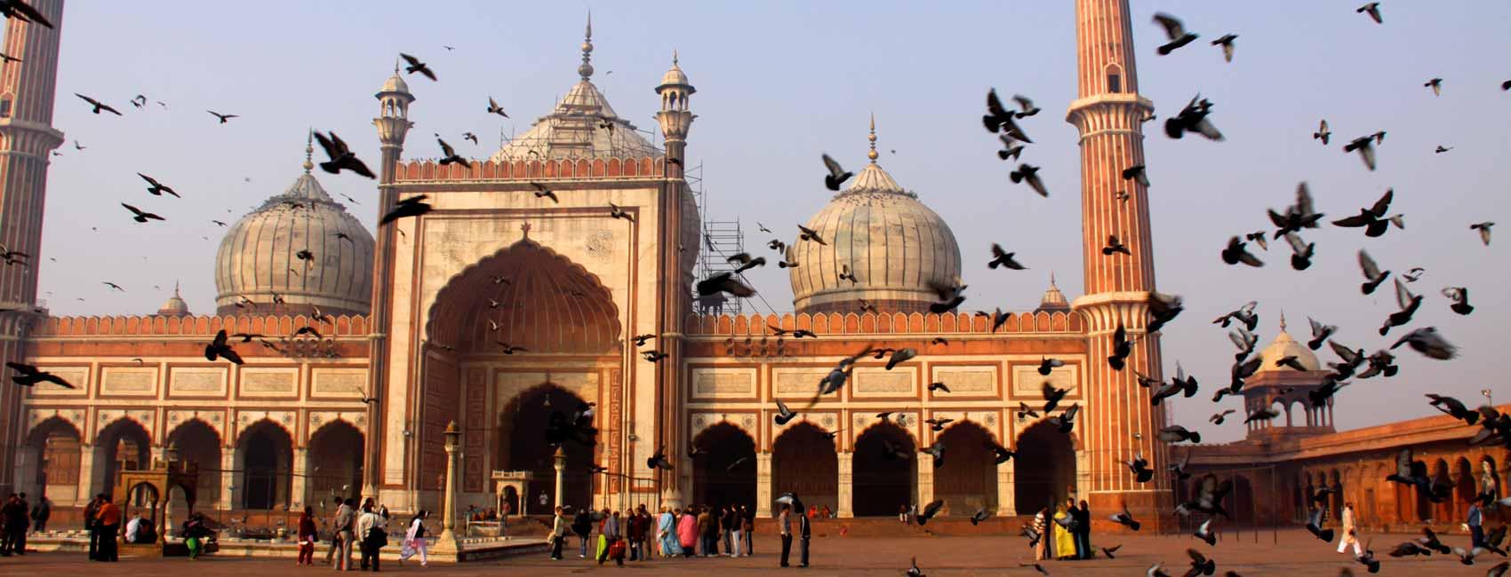 Delhi la trépidante