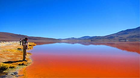 Laguna Colorada, Uyuni - Bolivie