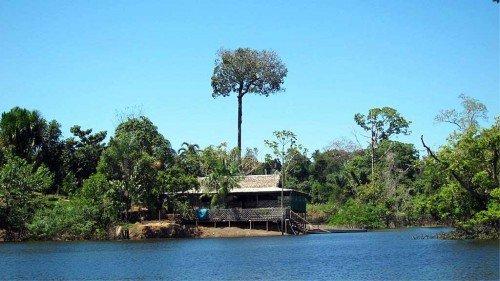 Lodge, Amazonie - Brésil