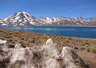 Réserve naturelle du désert de San Pedro de Atacama - Chili