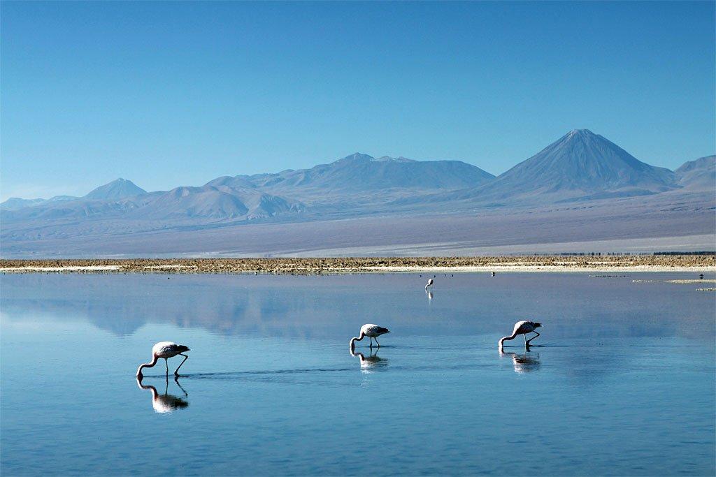 Récit de voyage : au Chili