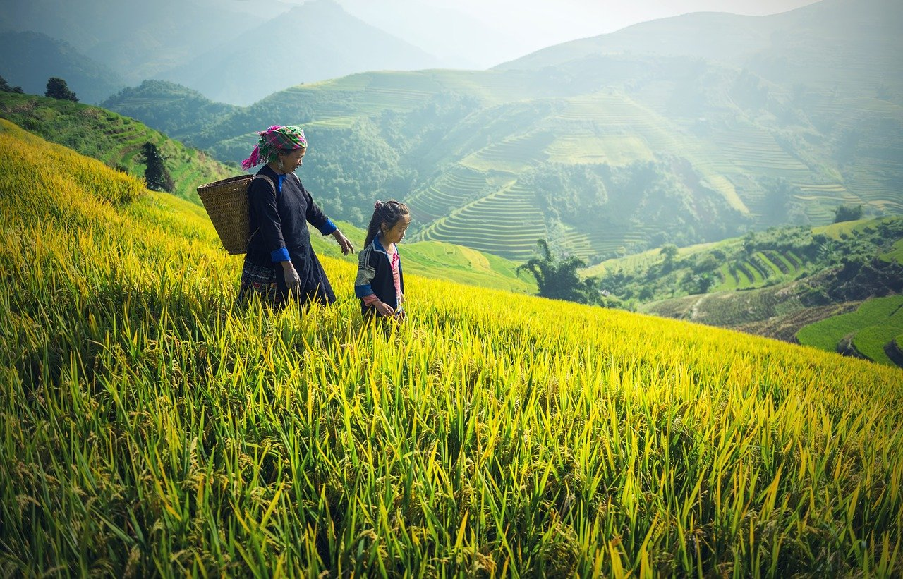 Le Vietnam en Famille