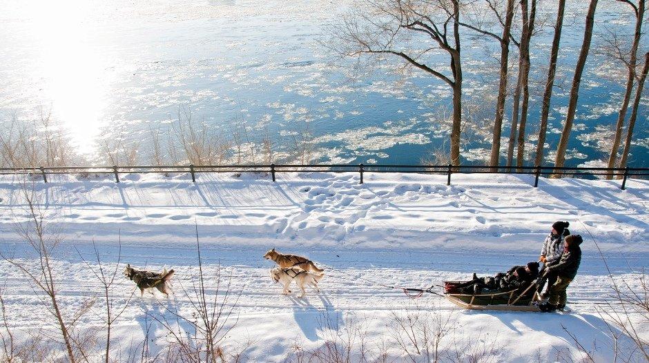 Traîneau à chiens le long du fleuve St-Laurent, au Canada